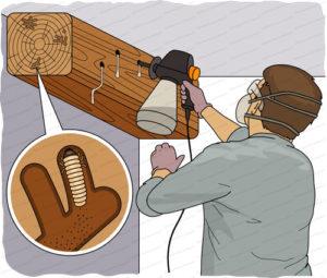 traitement charpente injection