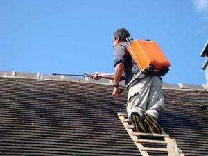 hydrofuge toit